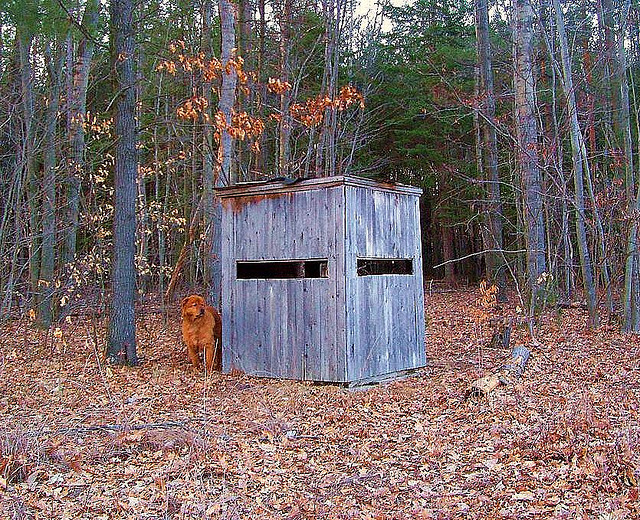 Tips for Using Ground Blinds | OutdoorHub