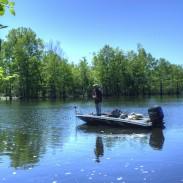 Out fishing. Photo: finchlake2000