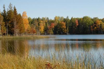 A lake in fall. Photo: Jim Sorbie