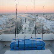 Don't Fall for Not-so-guided-fishing trips