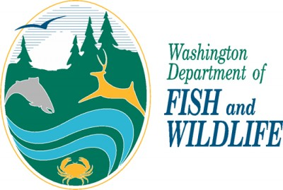 Washington state commission to consider sportfishing rules for Wash state fishing reports