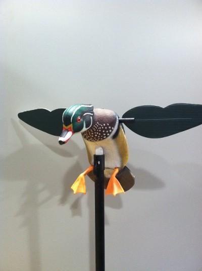 mojo duck