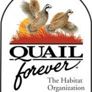 quail forever bird dog hunt classic