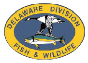 Delaware DNREC Fish & Wildlife Enforcement Blotter for Dec 21