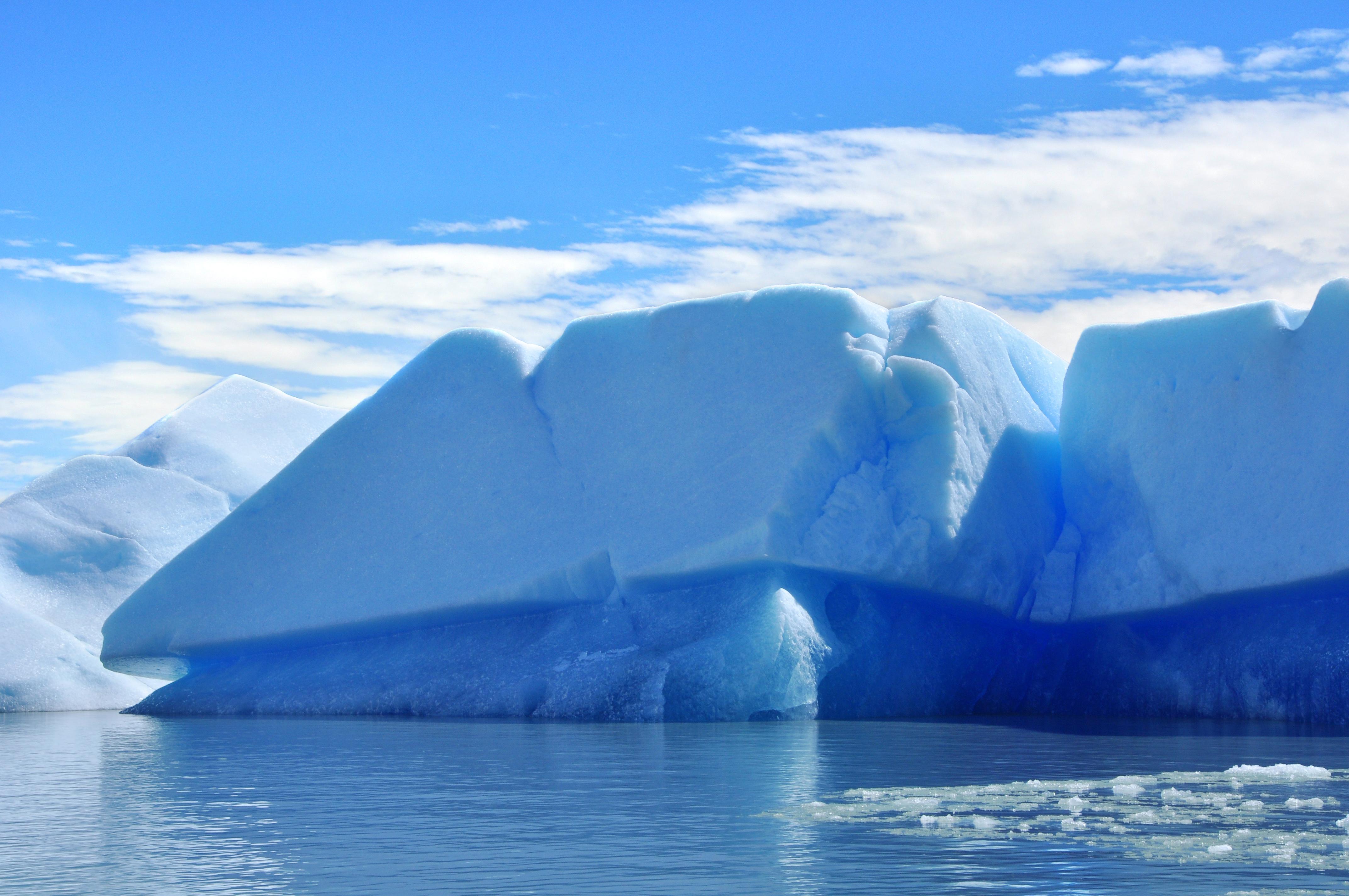 the arctics climate essay