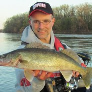 A spring walleye from the Mississippi River