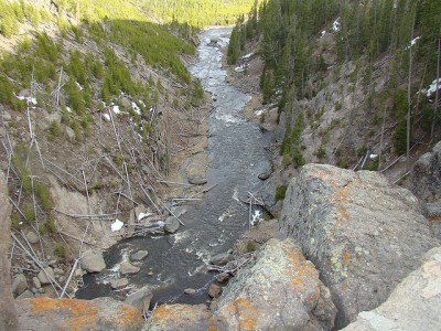 Gibbon River just below Gibbon Falls in Yellowstone National Park