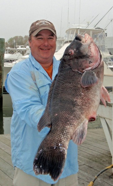 Record Tautog caught by Dr. Ken Neill