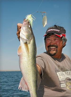 Ted Takasaki is all smiles as he holds up a dandy walleye caught during practice for the South Dakota Governor's Cup on Lake Oahe. He and partner Jammie Koepp worked out the championship pattern, using white and chartreuse Booyah spinnerbaits (normally considered bass lures), trolled through submerged tree tops.