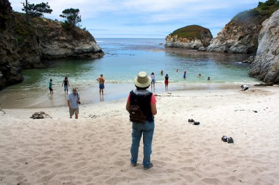 China Cove, Point Lobos State Park