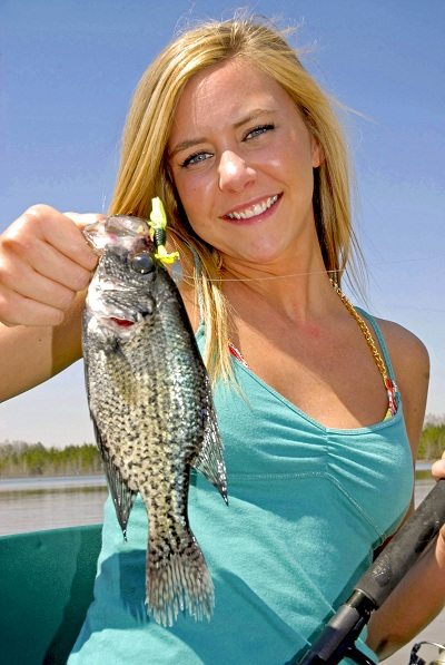 Learn about fishing for summertime crappie in new ebook for Crappie fishing in ky