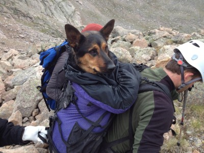 Photograph of the rescue posted by user SolarAlex on 14ers.com