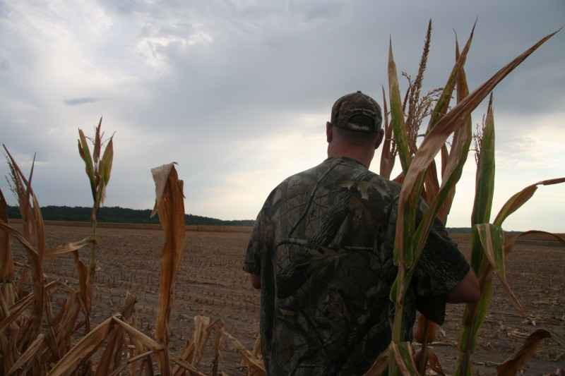 Preparing for dove hunting season