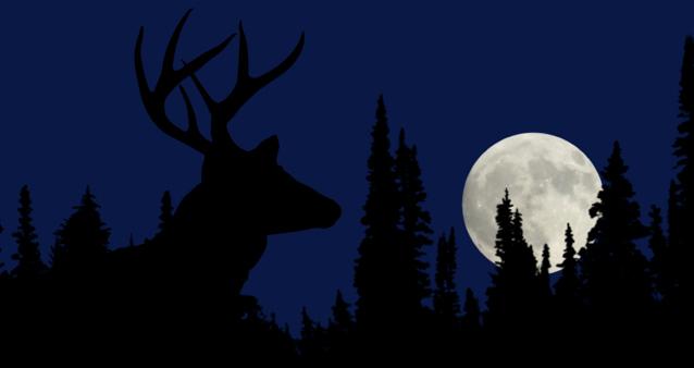 full moon buck