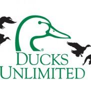 Ducks Unlimited DU logo