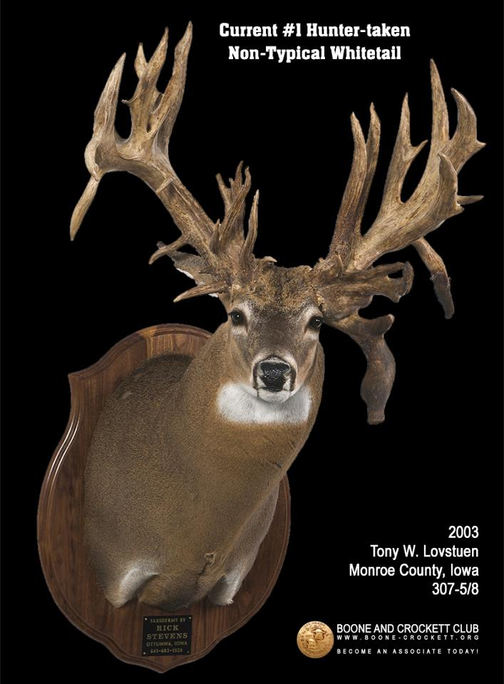 Possible Record Largest Non-typical Whitetail Harvested in Indiana ...