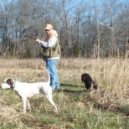 The classic quail moment of truth at Clinton House Plantation and Game Preserve.