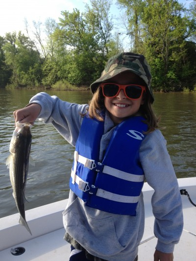 My daughter Alexandra and the rest of the family recently took a great fishing trip on the Roanoke River in North Carolina in search of striped bass.