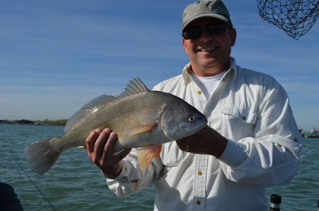 Golden domes fish and fun on the detroit river outdoor hub for Sheepshead fishing rigs