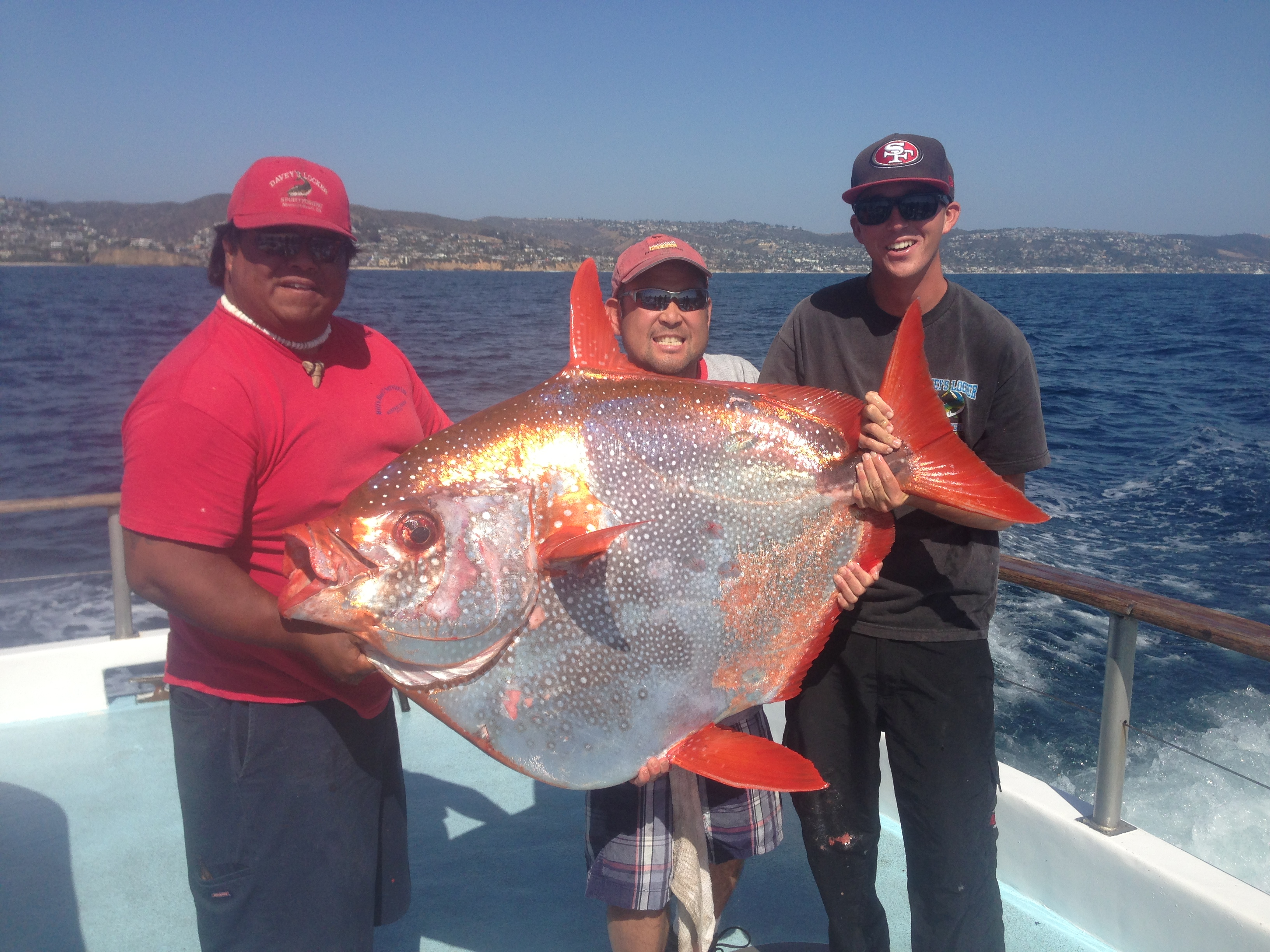 California anglers hook rarely caught 125 pound opah for Deep sea fishing newport