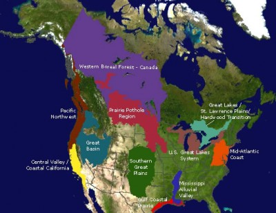 The Prairie Pothole Region is considered by many to be the most valuable source of waterfowl habitat in North America.