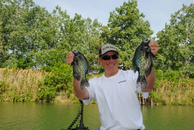 Crappies, like these, are underappreciated on Lake St. Clair.