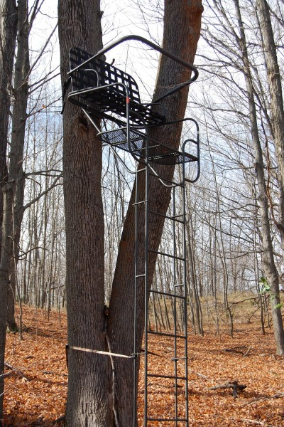 The Family Tradition DD14 Ladder Stand is well-built and incredibly sturdy, making it one of the best hunting platforms I've ever used.