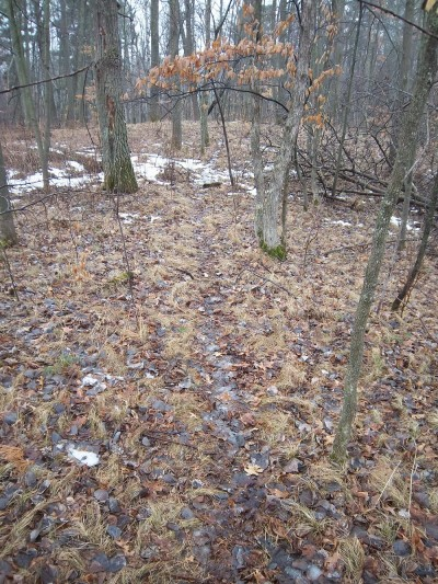 Early spring is a great time to get out and look over a small property, analyzing every inch of it. You can find the beds, the trails, and all kinds of clues about the deer on the property.