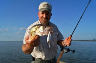 Knowledge of the local baitfish can be the most important factor in catching walleyes in the fall.