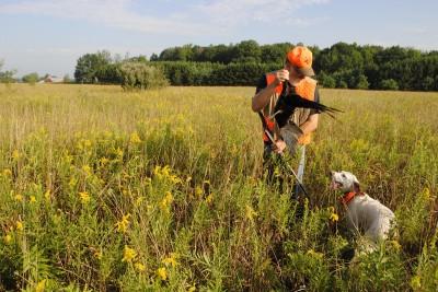 Tim Somerville shows Rub a pheasant.