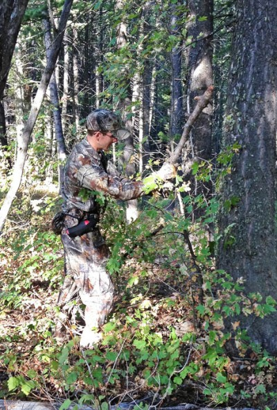 Chris White breaks brush to simulate two bull elk fighting.