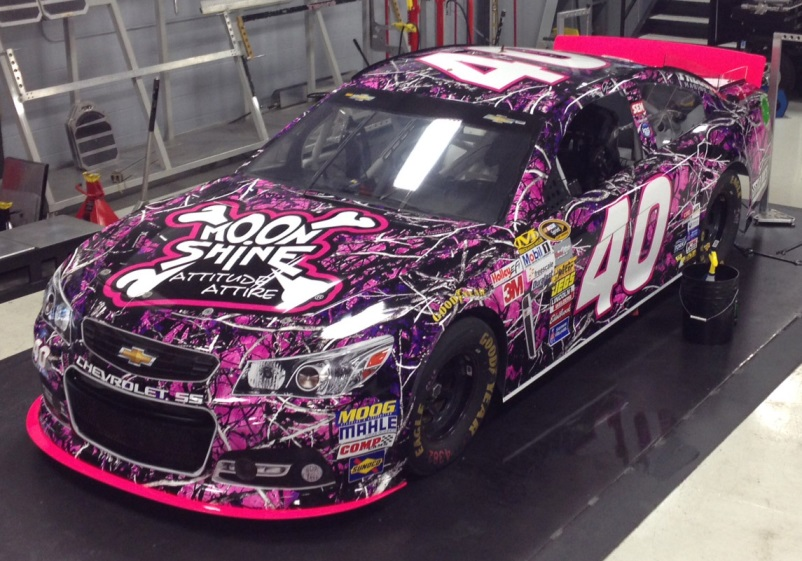 2013 Ford Fusion For Sale >> Moon Shine Joins Hillman Racing to Go Pink in October ...