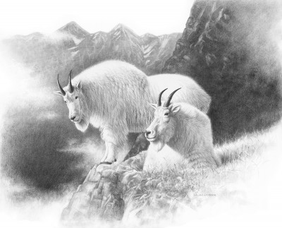 Dunn set off after two Rocky Mountain goats on a clear and cold November morning. Illustration by Dallen Lambson.