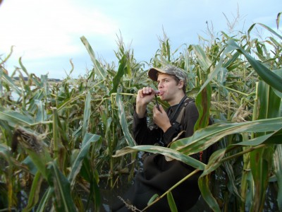Brandon Bakos calls from standing corn in the Shiawassee River State Game Area.