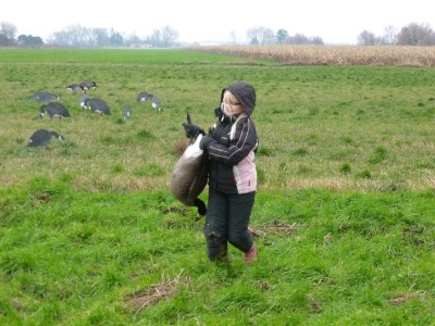 Ten-year-old Andrea Essenburg retrieves a goose her dad downed in a field at the Fennville Farm Managed Hunt Unit.