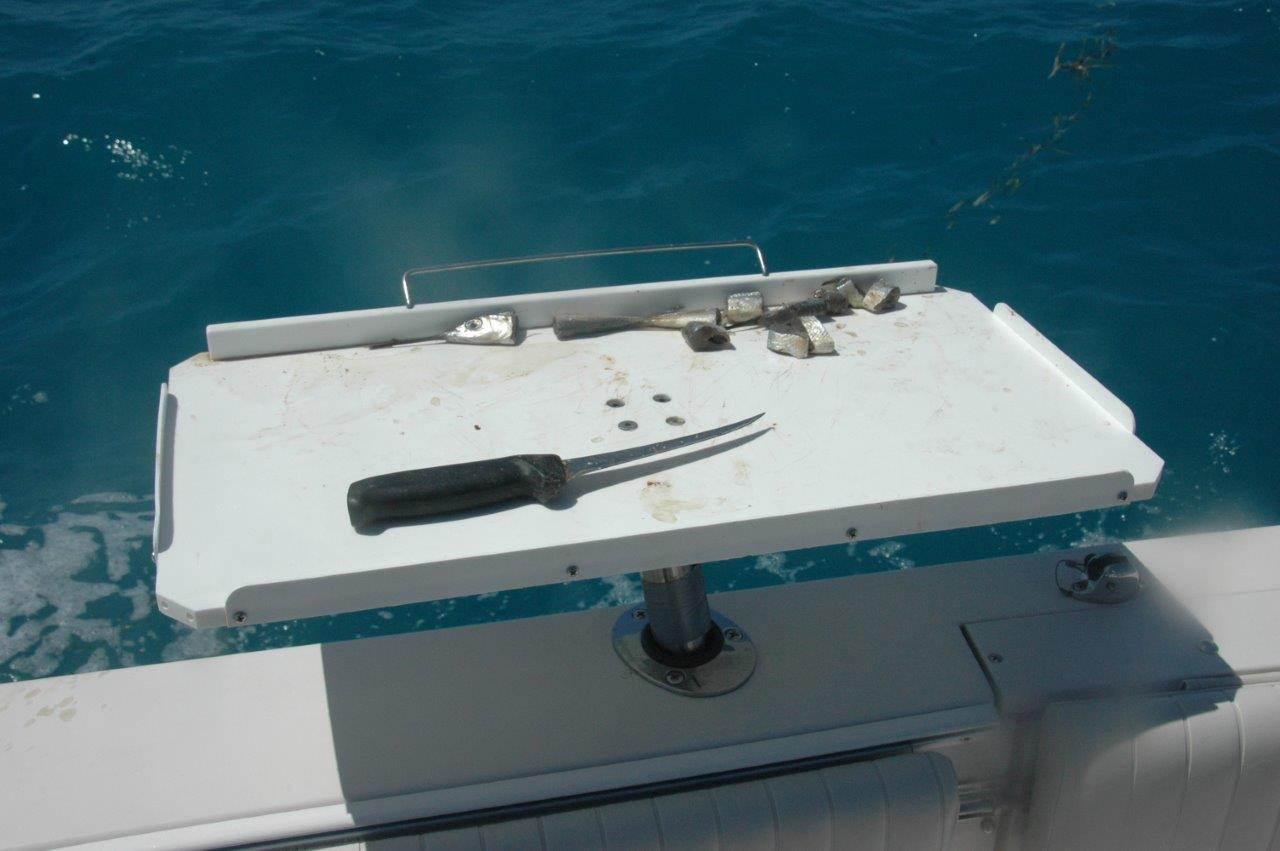 Eleven essentials for saltwater rigging outdoorhub for Fish cutting board