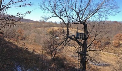 The author's box blind overlooks a recently-cut cornfield.