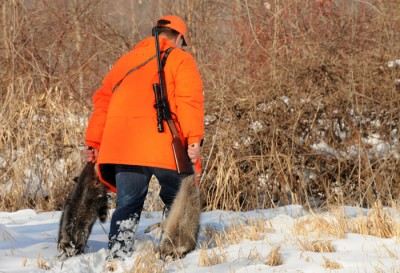 Craig Polensky of Watertown walks from the woods after a successful raccoon hunt in late December.