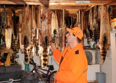 Craig Polensky of Watertown examines raccoon pelts drying inside his garage.