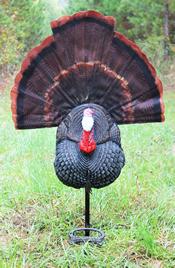 The Tail Jerker turkey decoy