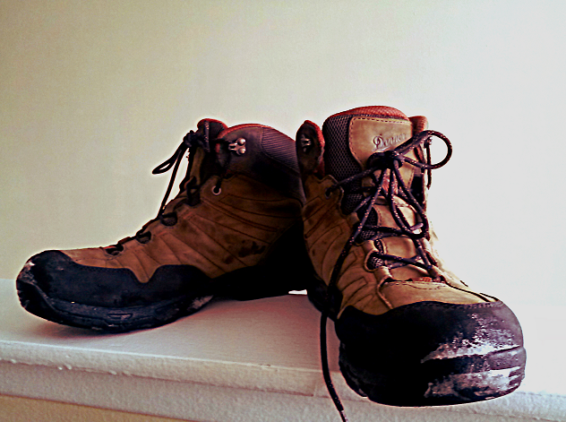 The Danner Nobo is an excellent all-weather boot.