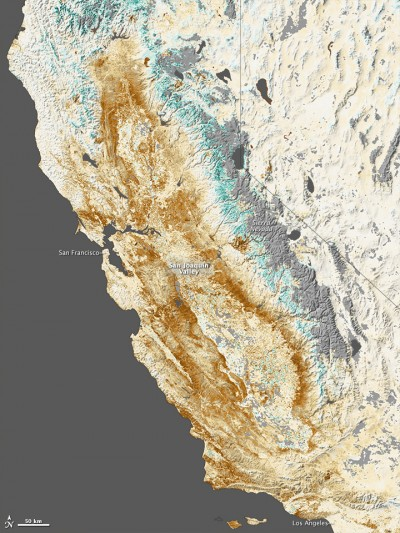This vegetation map shows the effect of drought on the state's forests and wild lands. Image courtesy Jesse Allen/NASA.