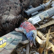 Last month, the author took his CVA Apex out to pattern it for turkey season.