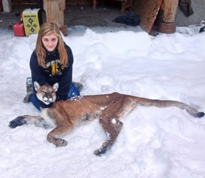 Shelby White shot this mountain lion while it was stalking her brother last week.