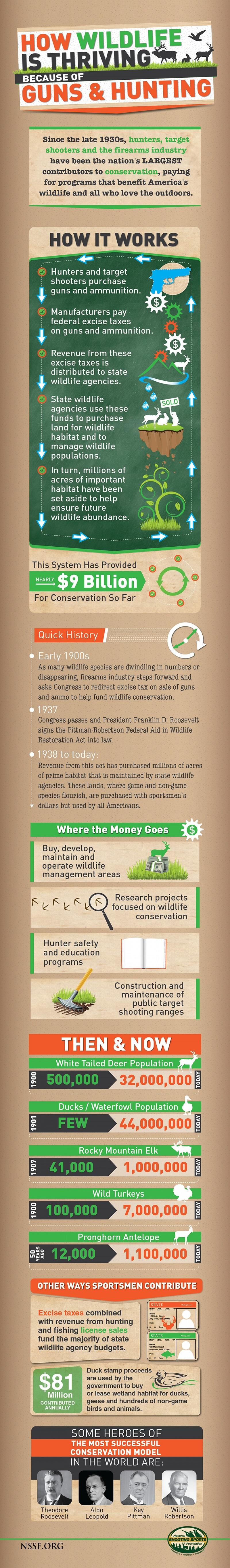 How WildlifeisThrivingBecauseofGuns Inforgraphic