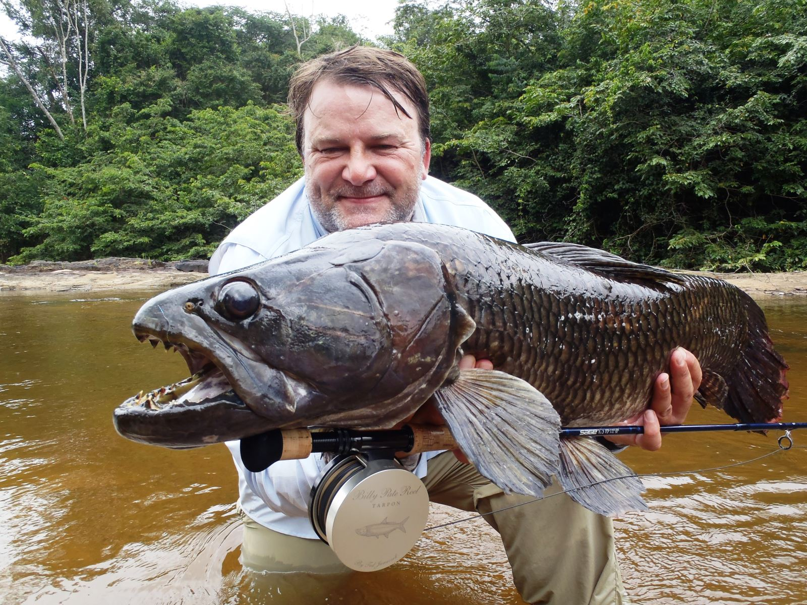 Uk angler lands potential record wolf fish in suriname for Black wolf fish