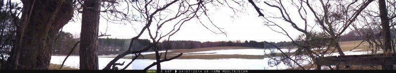The only deer I managed to get to walk past the camera (visible on the left side of the central image) during initial testing was a ways out, and yet the Moultrie still snapped its picture. This little guy was pushing that 70 foot range for sure! Click to enlarge this image.