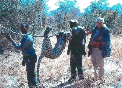 Larry Bucher with the leopard that mauled him. Image courtesy Larry Bucher.