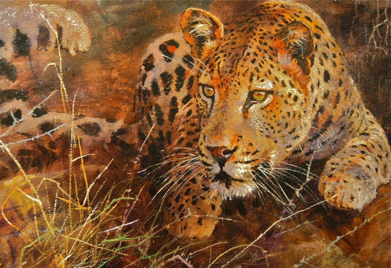 Dallas Safari Club life-member Larry Bucher's mauling by a wounded leopard is a testament to the reality of the danger that lures many to the Dark Continent—and the profound and unintended effects experiences in the outdoors can have on individuals. Artwork by Kobus Moller.
