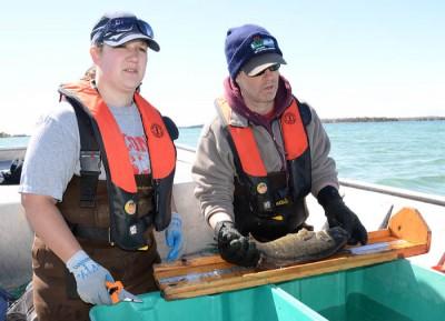 DNR biologist Emily Kurszewski and supervisor Scott Hansen collect data on a captured smallmouth bass.